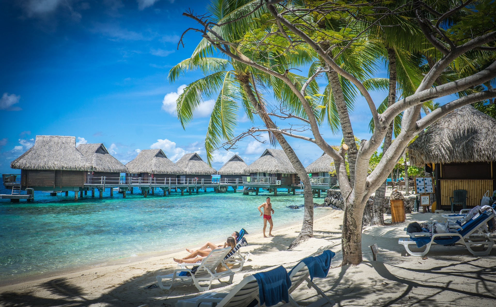 world's 50 best beaches palm trees fantasy beach bora bora