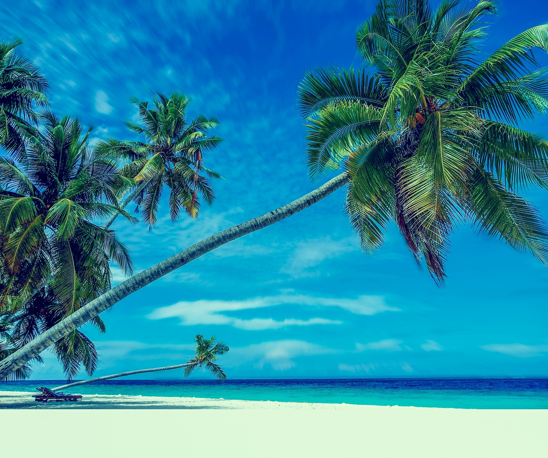 world's 50 best beaches palm trees fantasy beach
