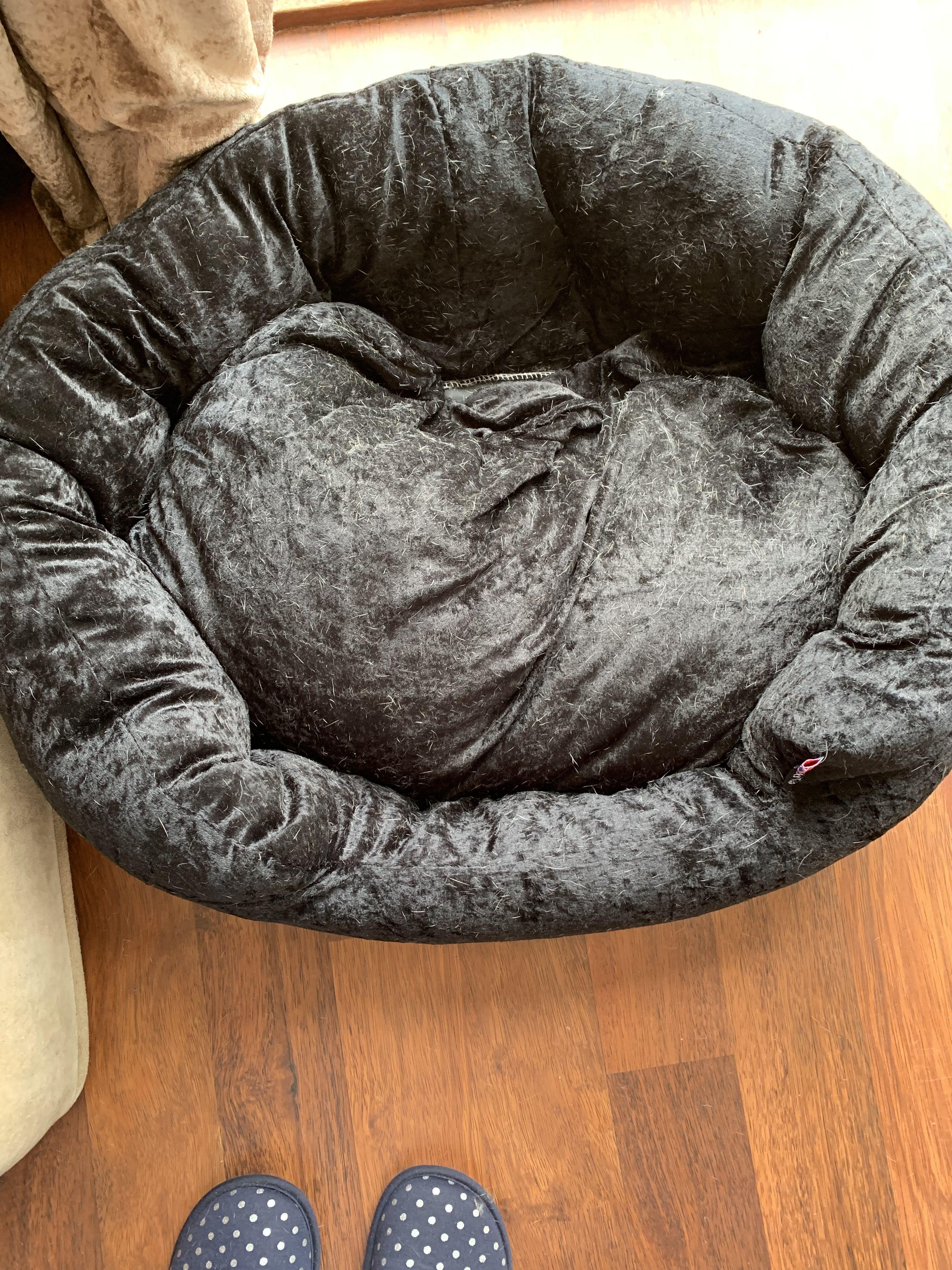luxury black velvet dog bed